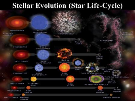Stellar Evolution (Star Life-Cycle). Basic Structure Mass governs a star's temperature, luminosity, and diameter. In fact, astronomers have discovered.