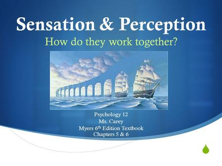 Sensation & Perception How do they work together? Psychology 12 Ms. Carey Myers 6 th Edition Textbook Chapters 5 & 6.