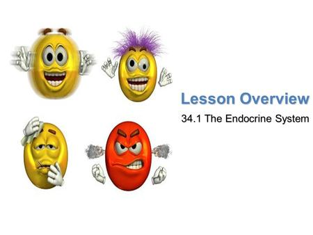 Lesson Overview Lesson Overview The Endocrine System Lesson Overview 34.1 The Endocrine System.