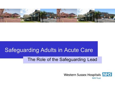 Safeguarding Adults in Acute Care The Role of the Safeguarding Lead.