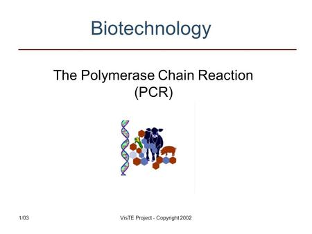 1/03VisTE Project - Copyright 2002 Biotechnology The Polymerase Chain Reaction (PCR)
