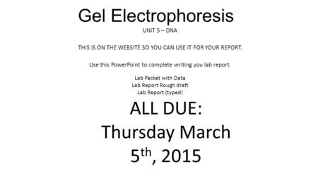 Gel Electrophoresis UNIT 5 – DNA THIS IS ON THE WEBSITE SO YOU CAN USE IT FOR YOUR REPORT. Use this PowerPoint to complete writing you lab report. Lab.