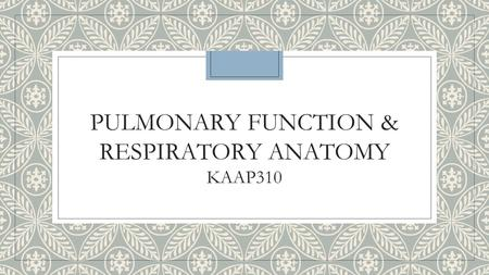 PULMONARY FUNCTION & RESPIRATORY ANATOMY KAAP310.