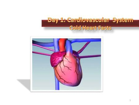 1. Primary Functions 2 The heart is a muscular organ that is responsible for pumping blood to all parts of the body 3 33.1 the CIRCULATORY SYSTEM.