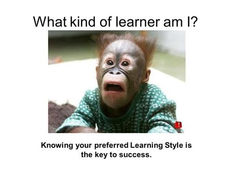 What kind of learner am I? Knowing your preferred Learning Style is the key to success.