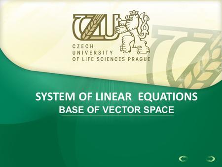 1 SYSTEM OF LINEAR EQUATIONS BASE OF VECTOR SPACE.