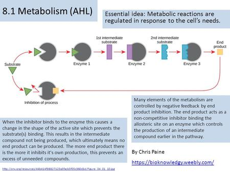 By Chris Paine https://bioknowledgy.weebly.com/ 8.1 Metabolism (AHL) Essential idea: Metabolic reactions are regulated in response to the cell's needs.
