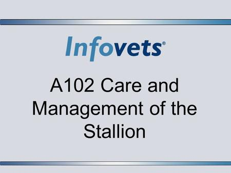 A102 Care and Management of the Stallion. Infovets Educational Resources – www.infovets.com – Slide 2 Sperm Production in the Stallion  Colts do not.