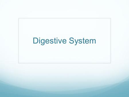 Digestive System. 3 Main Functions a.Digestion – breakdown of foods within stomach and intestines for use by body's cells b.Absorption – passage of digested.