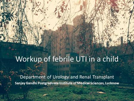 Workup of febrile UTI in a child Department of Urology and Renal Transplant Sanjay Gandhi Postgraduate Institute of Medical Sciences, Lucknow.