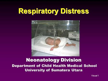 Visual 1 Respiratory Distress Neonatology Division Department of Child Health Medical School University of Sumatera Utara.