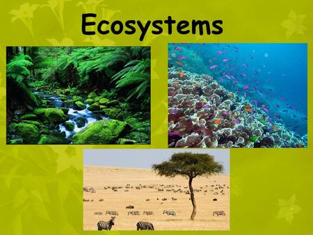 Ecosystems. Ecosystem = all the organisms that live in a particular place, AND their nonliving and living environment Ecosystems are made and shaped by.