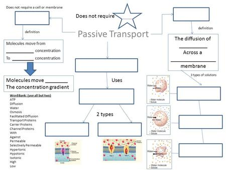 Passive Transport Word Bank: (use all but two) ATP Diffusion Water Osmosis Facilitated Diffusion Transport Proteins Carrier Proteins Channel Proteins With.