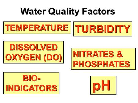 TEMPERATURE DISSOLVED OXYGEN (DO) OXYGEN (DO) pH NITRATES & PHOSPHATES NITRATES & PHOSPHATES TURBIDITY BIO- INDICATORS Water Quality Factors.