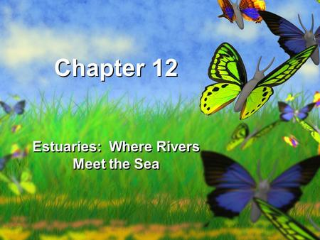 Chapter 12 Estuaries: Where Rivers Meet the Sea.
