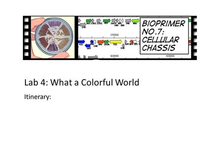 Lab 4: What a Colorful World Itinerary:. An engineering paradigm The focus of this lab Design Build Test.