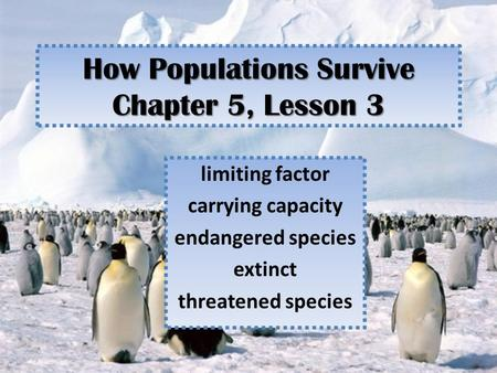 How Populations Survive Chapter 5, Lesson 3 limiting factor carrying capacity endangered species extinct threatened species.