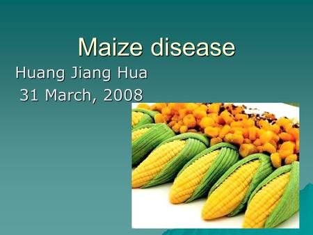 Maize disease Huang Jiang Hua 31 March, 2008. Northern Corn Leaf Blight  Northern leaf blight has traditionally been one of the most damaging corn leaf.
