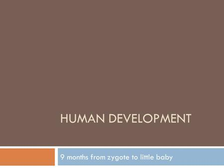 HUMAN DEVELOPMENT 9 months from zygote to little baby.