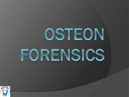 Osteons  Osteons are the basic functional unit of compact bone.  Osteons are made of many concentric lamellae (layers) that are similar to rings of.
