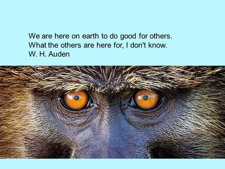 We are here on earth to do good for others. What the others are here for, I don't know. W. H. Auden.