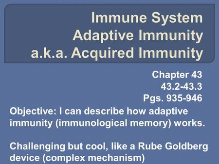 Chapter 43 43.2-43.3 Pgs. 935-946 Objective: I can describe how adaptive immunity (immunological memory) works. Challenging but cool, like a Rube Goldberg.