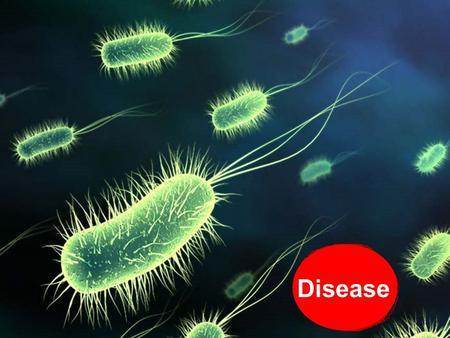 Disease. Normally human body and the life processes in it are functioning smoothly. But there are micro-organisms around us which can do us harm by entering.