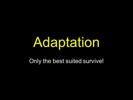 Adaptation Only the best suited survive!. Adaptation: An organism's physical traits or behaviors that helps it survive in its environment Adaptations.