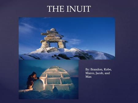 THE INUIT By: Brandon, Kobe, Marco, Jacob, and Max.