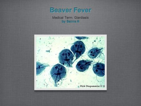 Beaver Fever Medical Term: Giardiasis by Sairra H Medical Term: Giardiasis by Sairra H.