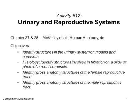 Activity #12: Urinary and Reproductive Systems