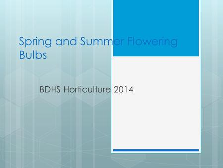 Spring and Summer Flowering Bulbs BDHS Horticulture 2014.