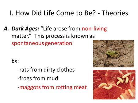 "I. How Did Life Come to Be? - Theories A.Dark Ages: ""Life arose from non-living matter."" This process is known as spontaneous generation Ex: -rats from."