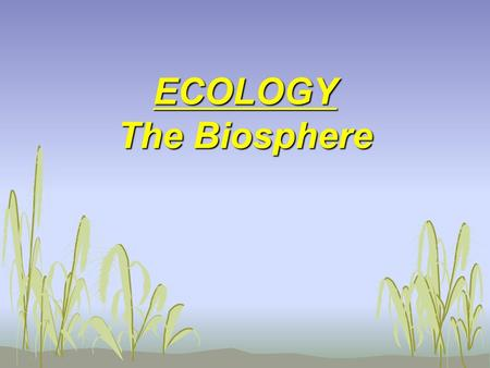 ECOLOGY The Biosphere. Intro to Ecology Movie I.General Info A. Ecology is the scientific study of the interactions of living (biotic) organisms with.