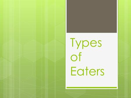 Types of Eaters. Carnivore  An animal that gets food from killing and eating other animals  Generally eat herbivores, but can eat omnivores also  Important.