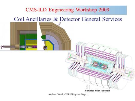 Andrea Gaddi, CERN Physics Dept. CMS-ILD Engineering Workshop 2009 Coil Ancillaries & Detector General Services.