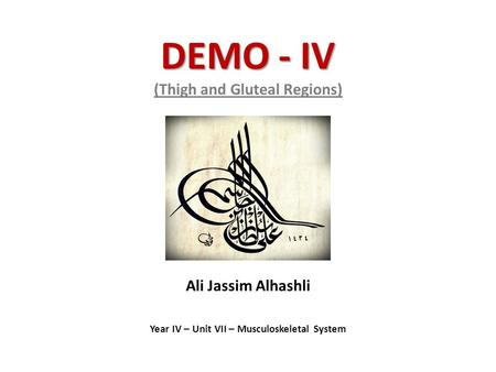 DEMO - IV DEMO - IV (Thigh and Gluteal Regions) Ali Jassim Alhashli Year IV – Unit VII – Musculoskeletal System.