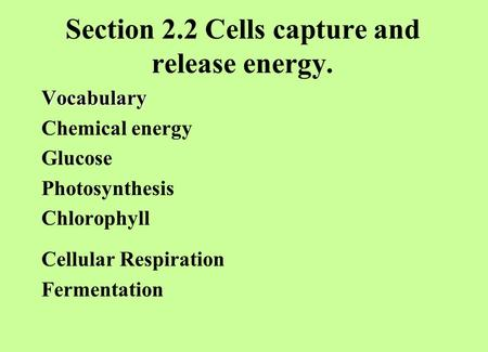 Section 2.2 Cells capture and release energy. Vocabulary Chemical energy Glucose Photosynthesis Chlorophyll Cellular Respiration Fermentation.