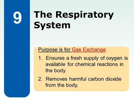The Respiratory System Purpose is for Gas Exchange 1.Ensures a fresh supply of oxygen is available for chemical reactions in the body. 2.Removes harmful.