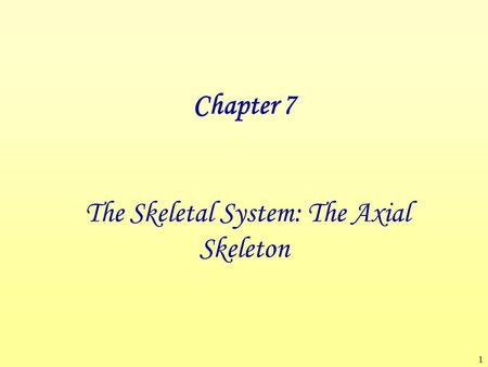 1 Chapter 7 The Skeletal System: The Axial Skeleton.