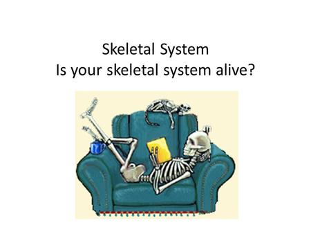 Skeletal System Is your skeletal system alive?