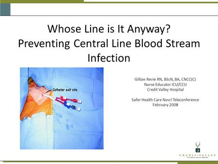 Whose Line is It Anyway? Preventing Central Line Blood Stream Infection Gillian Revie RN, BScN, BA, CNCC(C) Nurse Educator ICU/CCU Credit Valley Hospital.