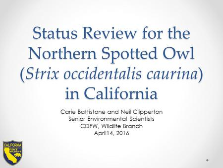 Status Review for the Northern Spotted Owl (Strix occidentalis caurina) in California Carie Battistone and Neil Clipperton Senior Environmental Scientists.