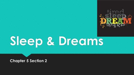 Sleep & Dreams Chapter 5 Section 2. Main Idea:  Sleeping and dreaming are essential to human health, although many questions remain. Some people are.