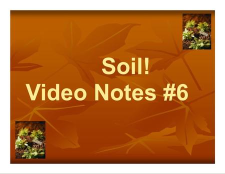 Soil! Video Notes #6. What are we going to learn… Soil-Why is it important? What is soil? Sand, Silt and Clay What's a soil profile? Horizons? Not all.