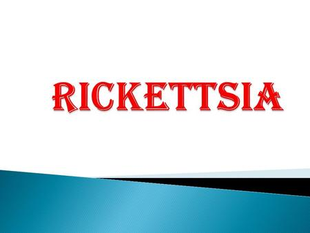 The Rickettsia are Gram negative, obligate intracellular organism that infect mammals and arthropods.  They are primarily transmitted to humans through.