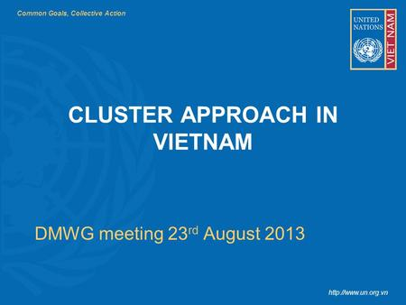 Common Goals, Collective Action  DMWG meeting 23 rd August 2013 CLUSTER APPROACH IN VIETNAM.