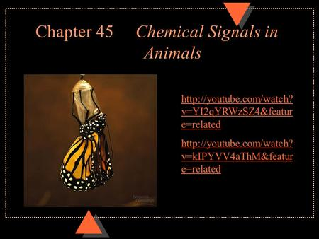 Chapter 45 Chemical Signals in Animals  v=YI2qYRWzSZ4&featur e=related  v=kIPYVV4aThM&featur e=related.