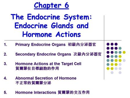 Chapter 6 The Endocrine System: Endocrine Glands and Hormone Actions 1.Primary Endocrine Organs 初級內分泌器官 2.Secondary Endocrine Organs 次級內分泌器官 3.Hormone.