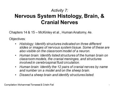 Activity 7: Nervous System Histology, Brain, & Cranial Nerves Chapters 14 & 15 – McKinley et al., Human Anatomy, 4e. Objectives: Histology: Identify structures.